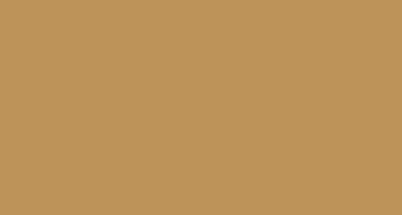 DesignGecko Logo
